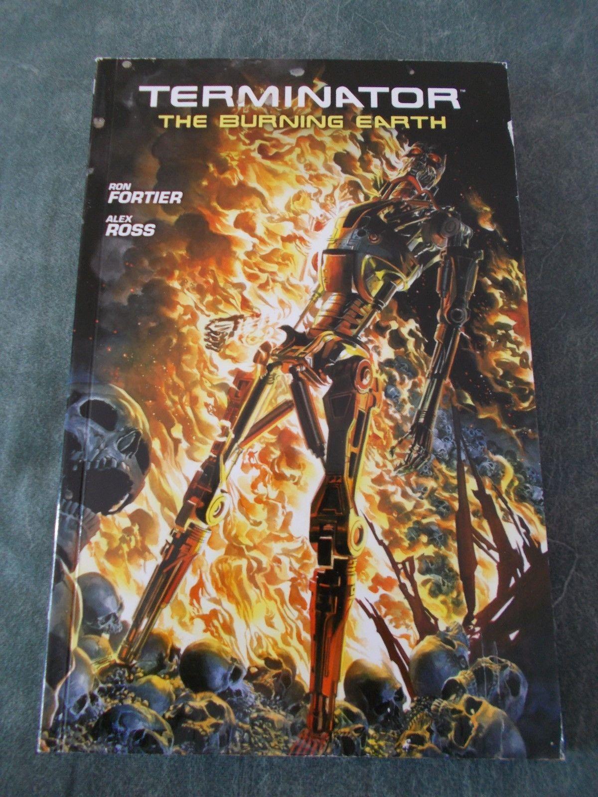 Alex Ross Terminator Burining Earth